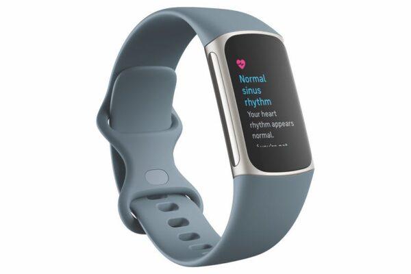 Fitbit Charge 5 Tracker Steel Blue & Platinum – 79-FB421SRBU